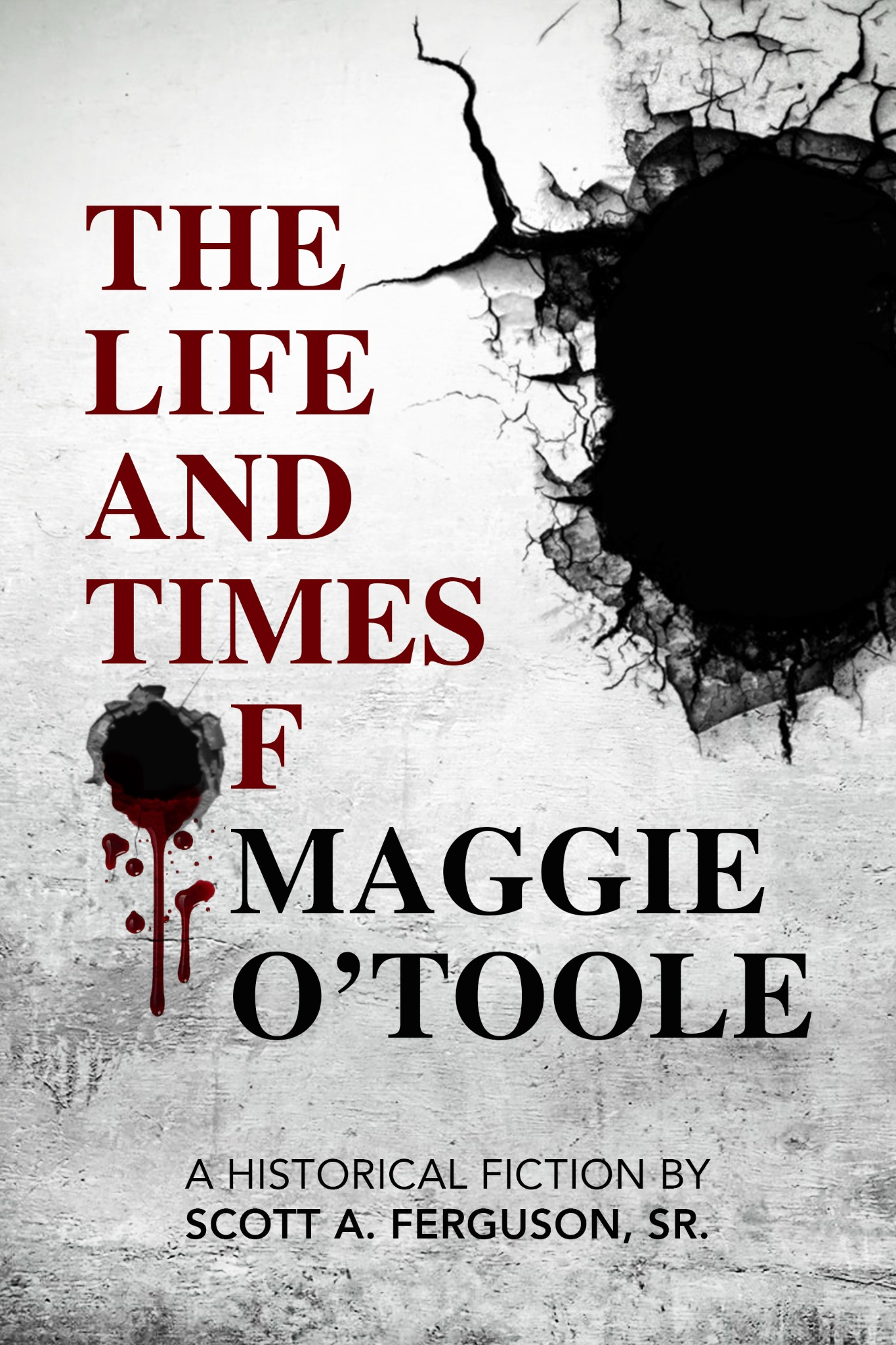 The Life and Times of Maggie O'Toole (eReader)