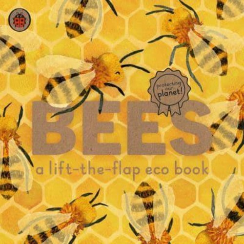 Bees A Lift-The-Flap Eco Book - Carmen Saldaña