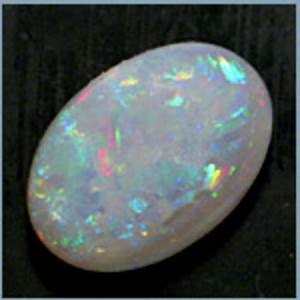 New - Opal Zoom Sessions