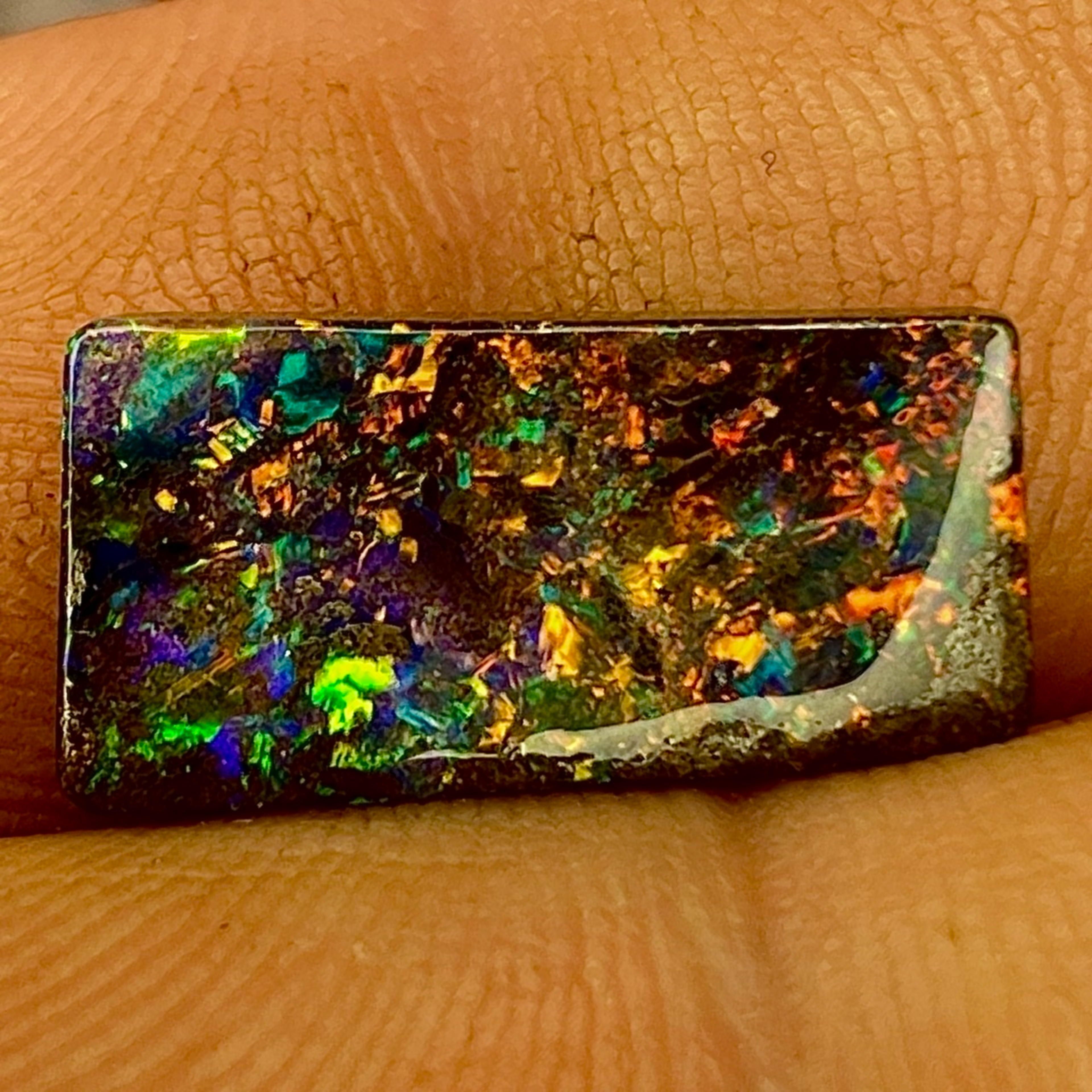 4.2 cts A Solid, Natural , Queensland Boulder Opal of absolute gem quality.
