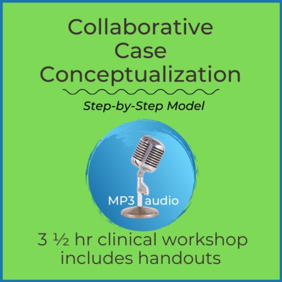 Case Conceptualization (step-by-step model)