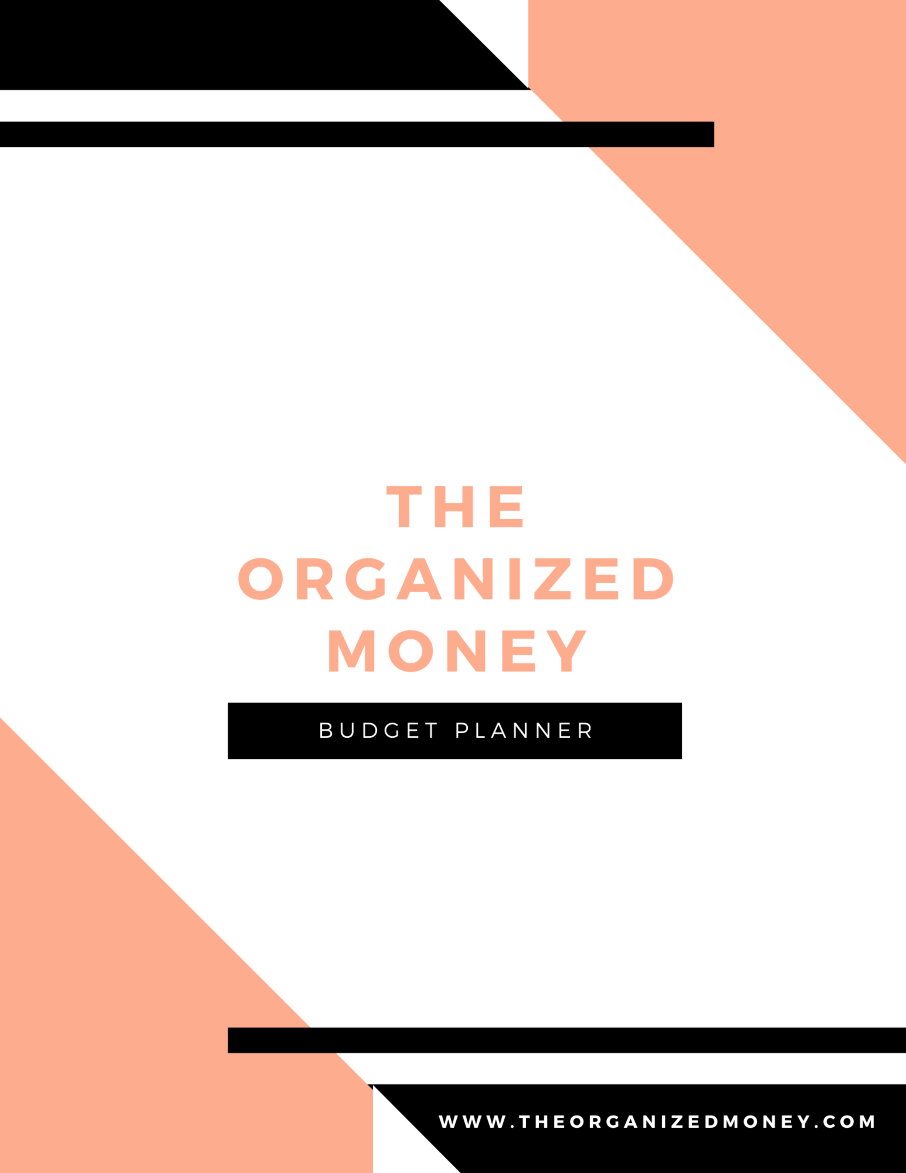 The Organized Money Budget Planner Download