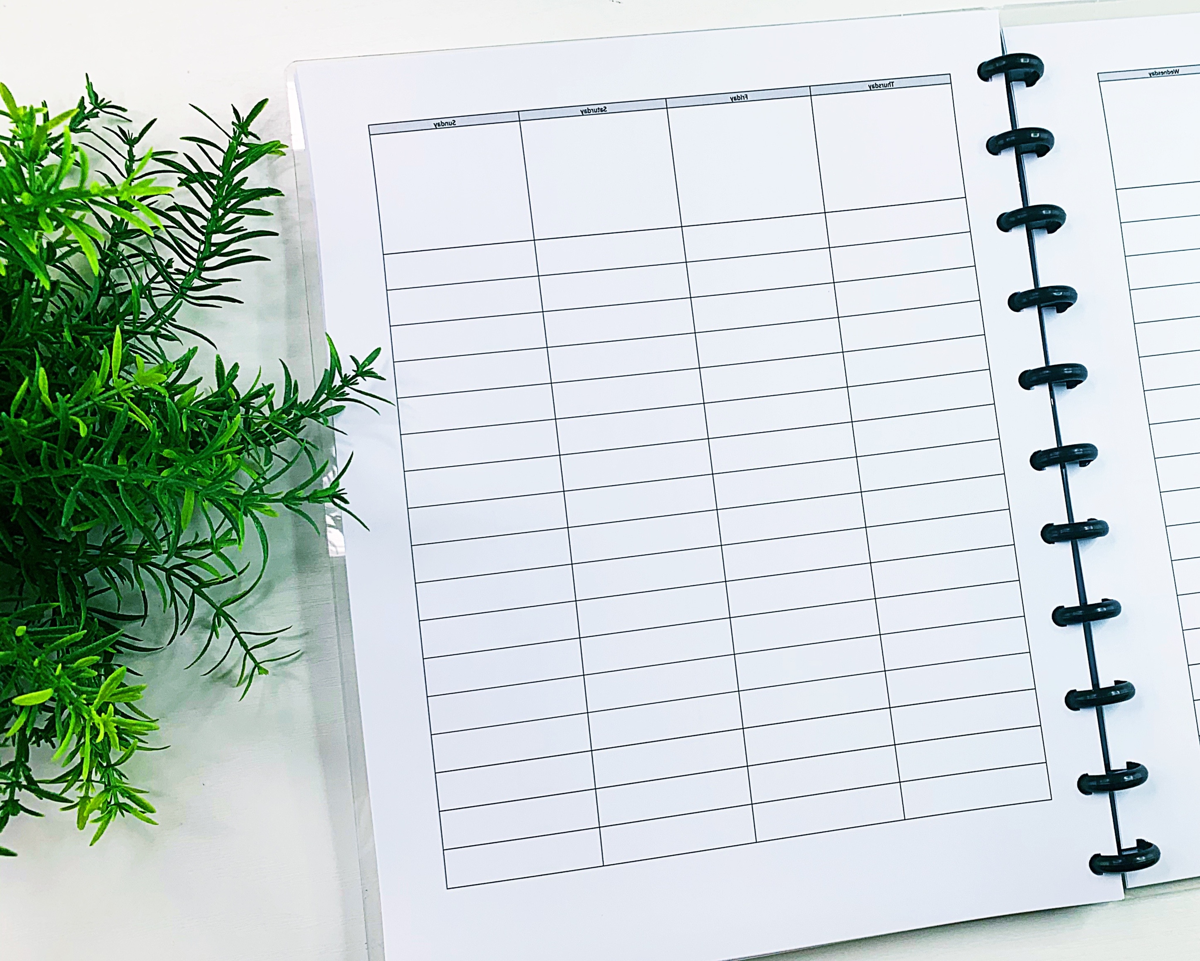 The Organized Money Life Planner Download