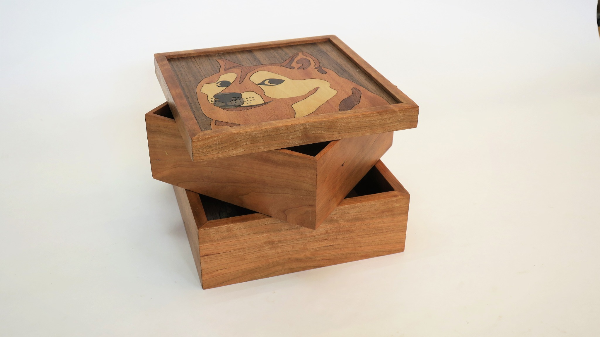 Dogebox with Secret Compartment