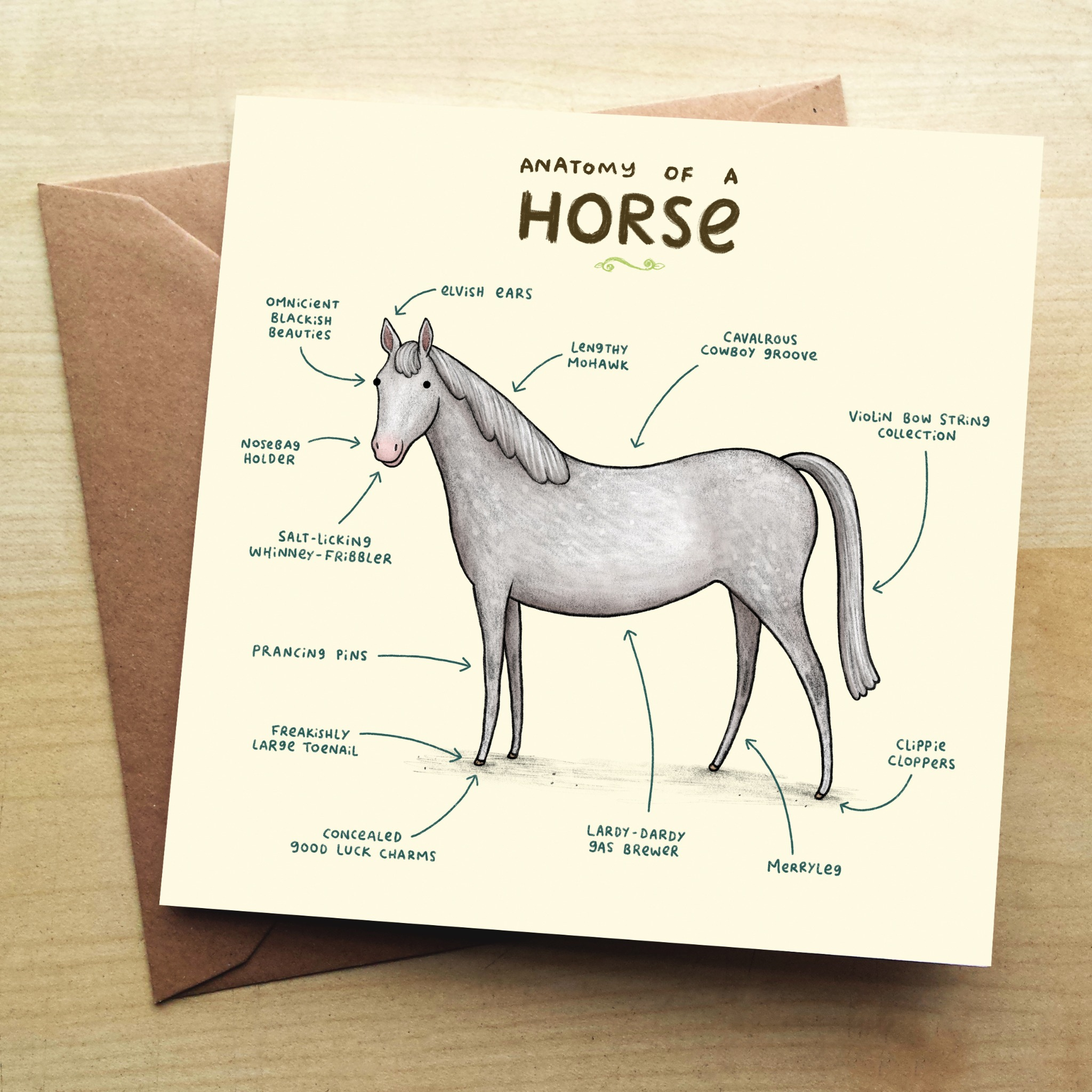 Wraptious Anatomy of a Horse Greeting Card