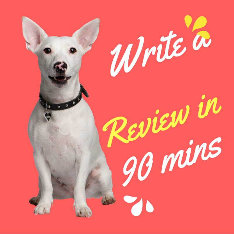 FREE SAMPLE EXTRACT - Write a Review in 90 mins
