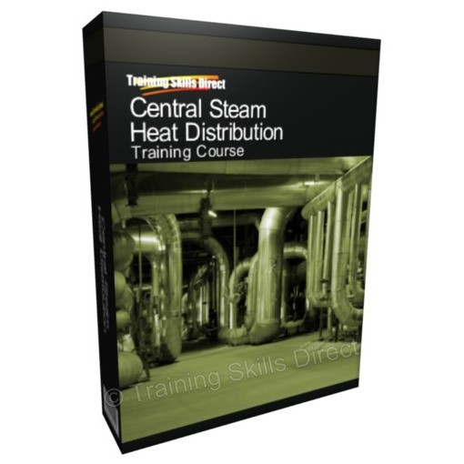 Central Steam Heat Distribution