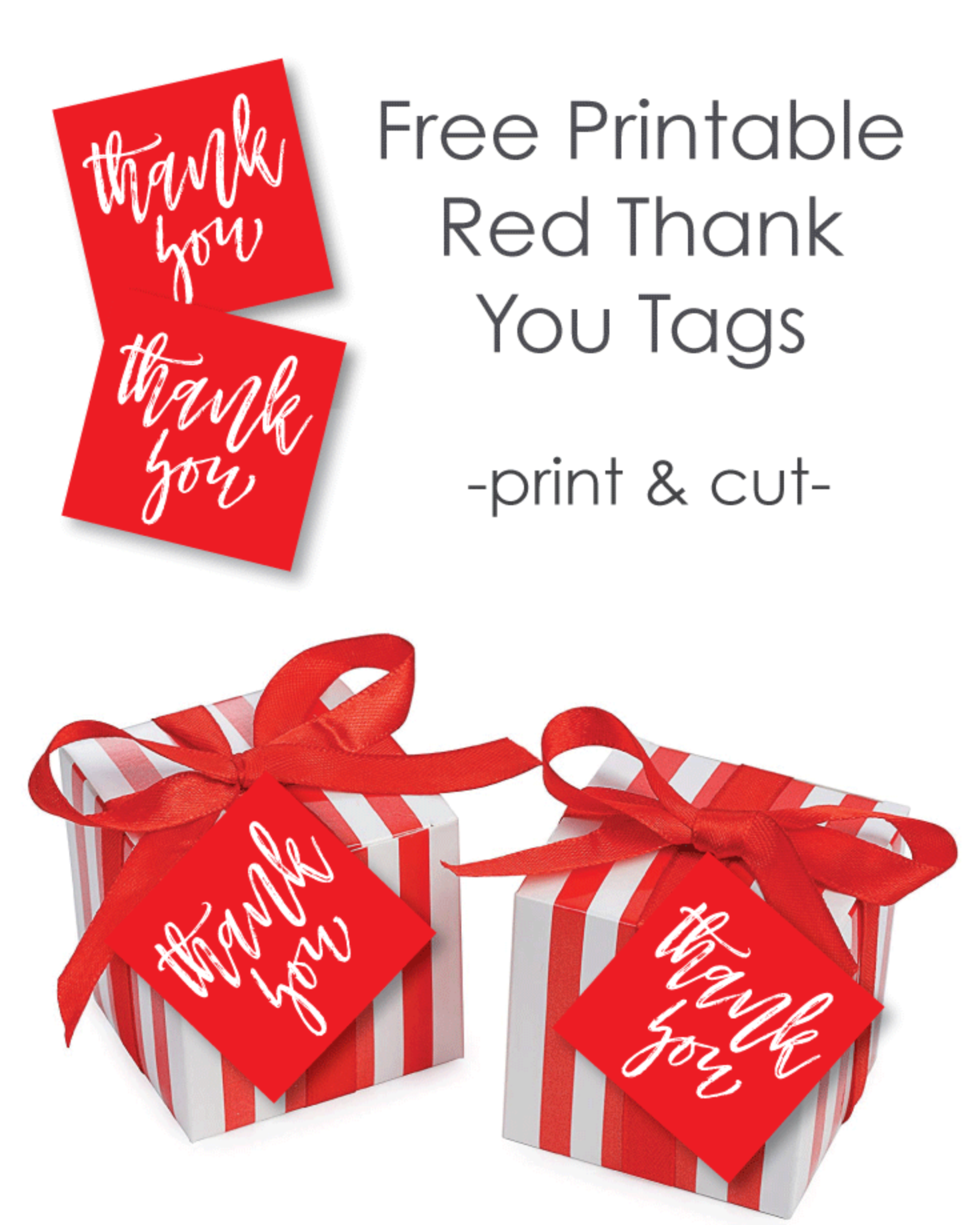Free Printable Red Thank You Favor Tags