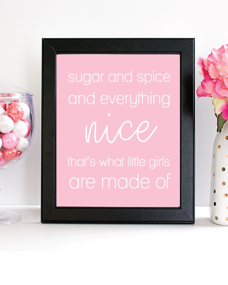 Printable Pink Sugar And Spice, 8x10