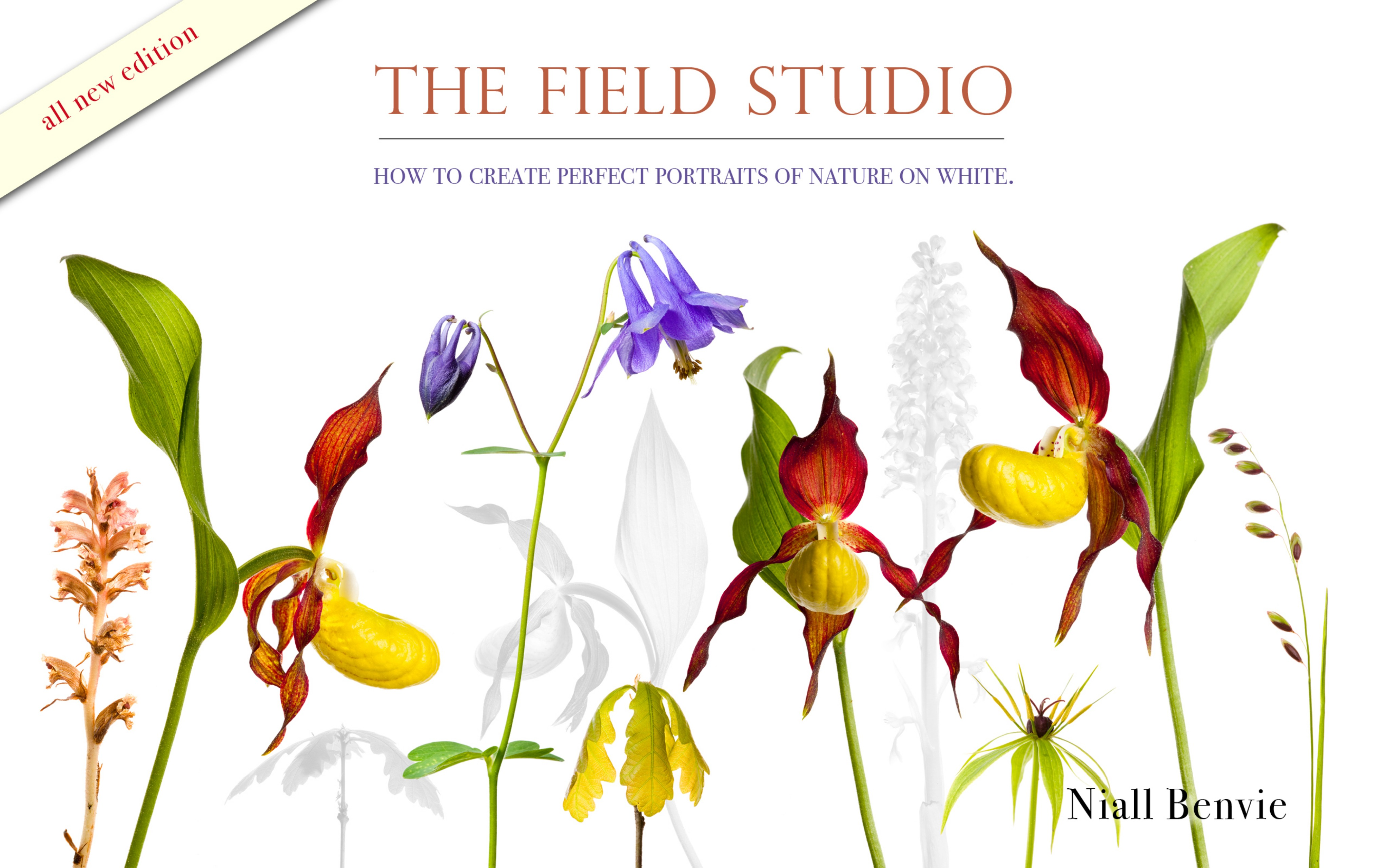 The Field Studio: How to Create Perfect Portraits of Nature on White.