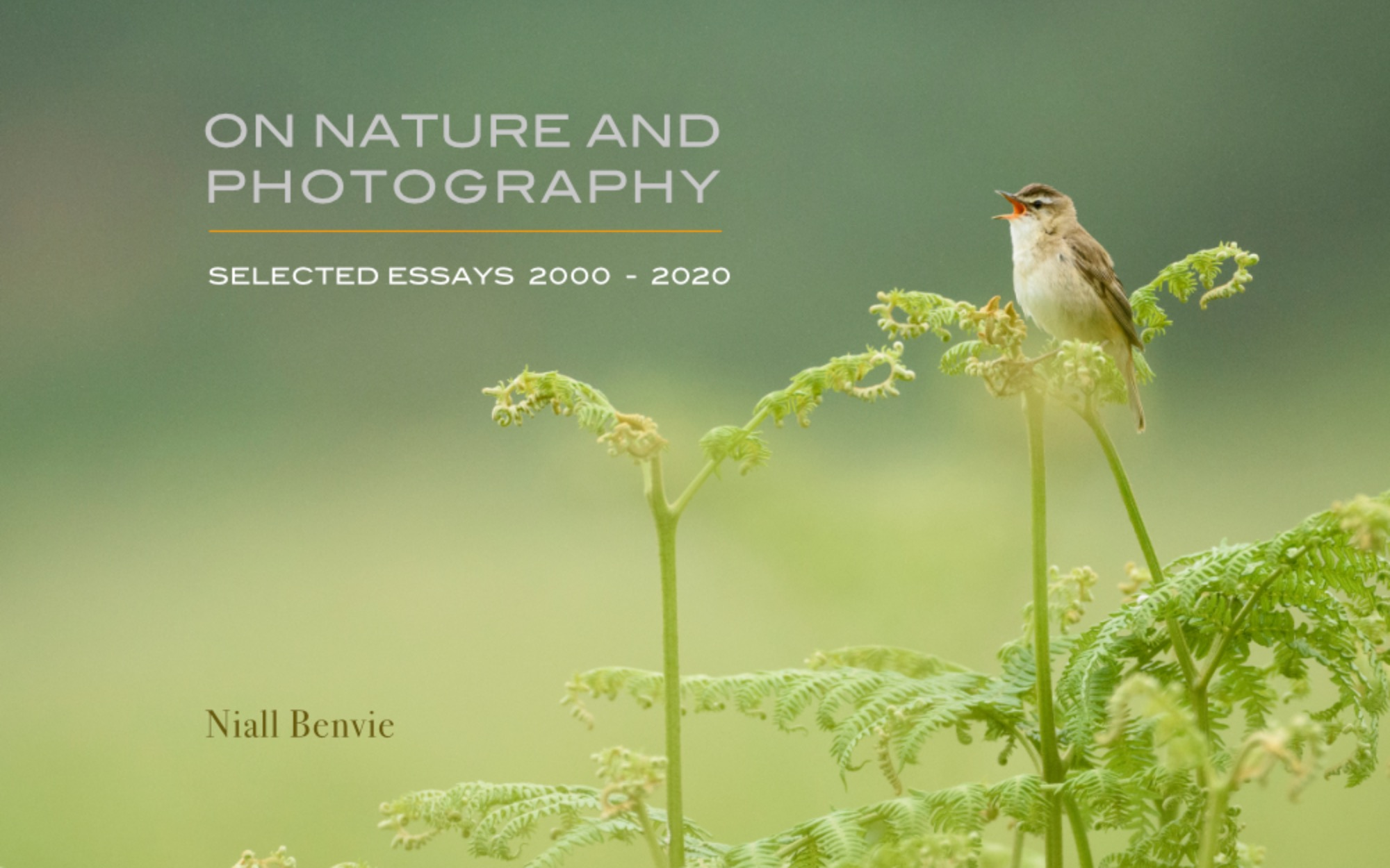 On Nature and Photography. Selected Essays 2000 - 2020.