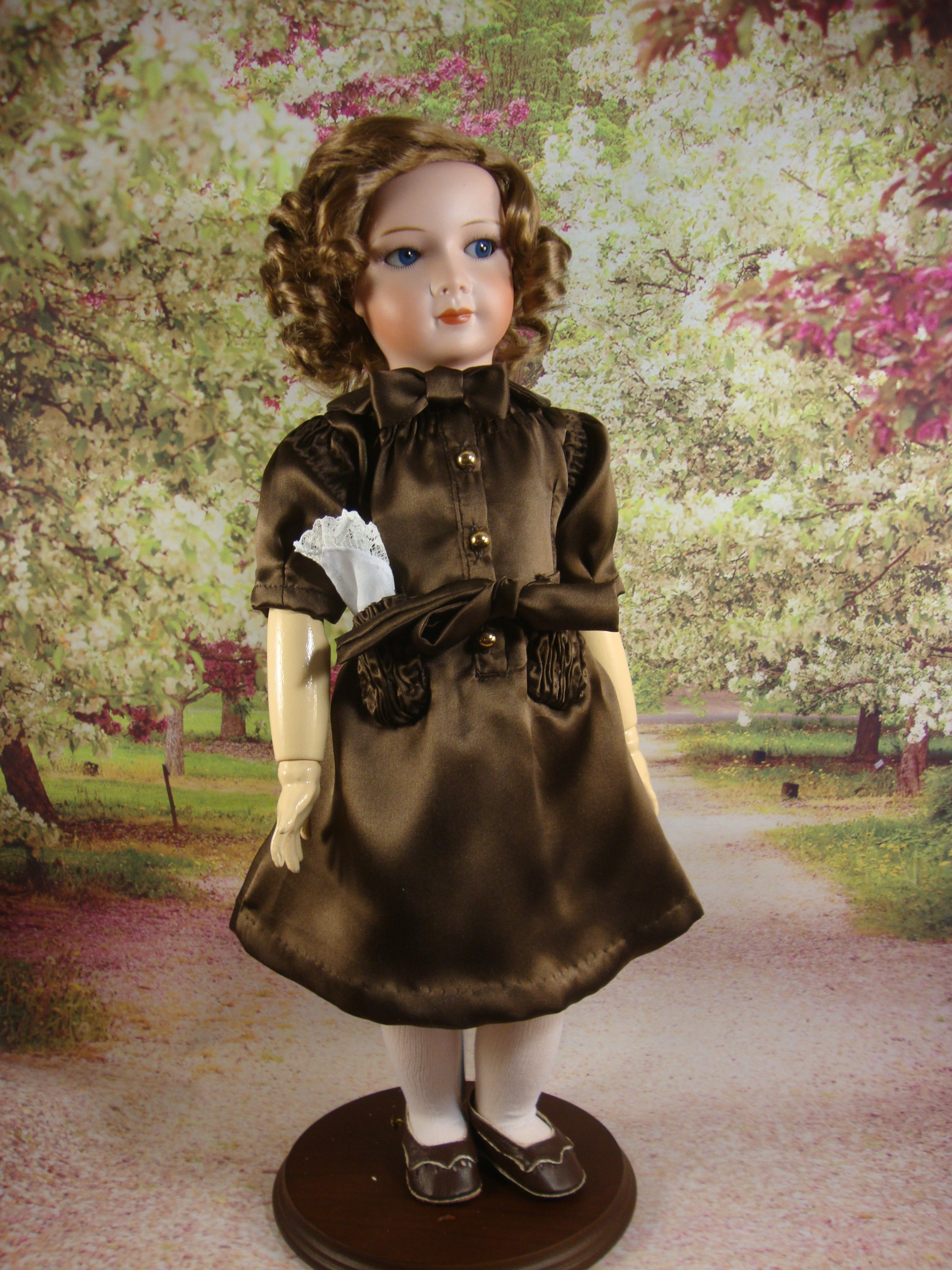 Princess Brown Silk Dress