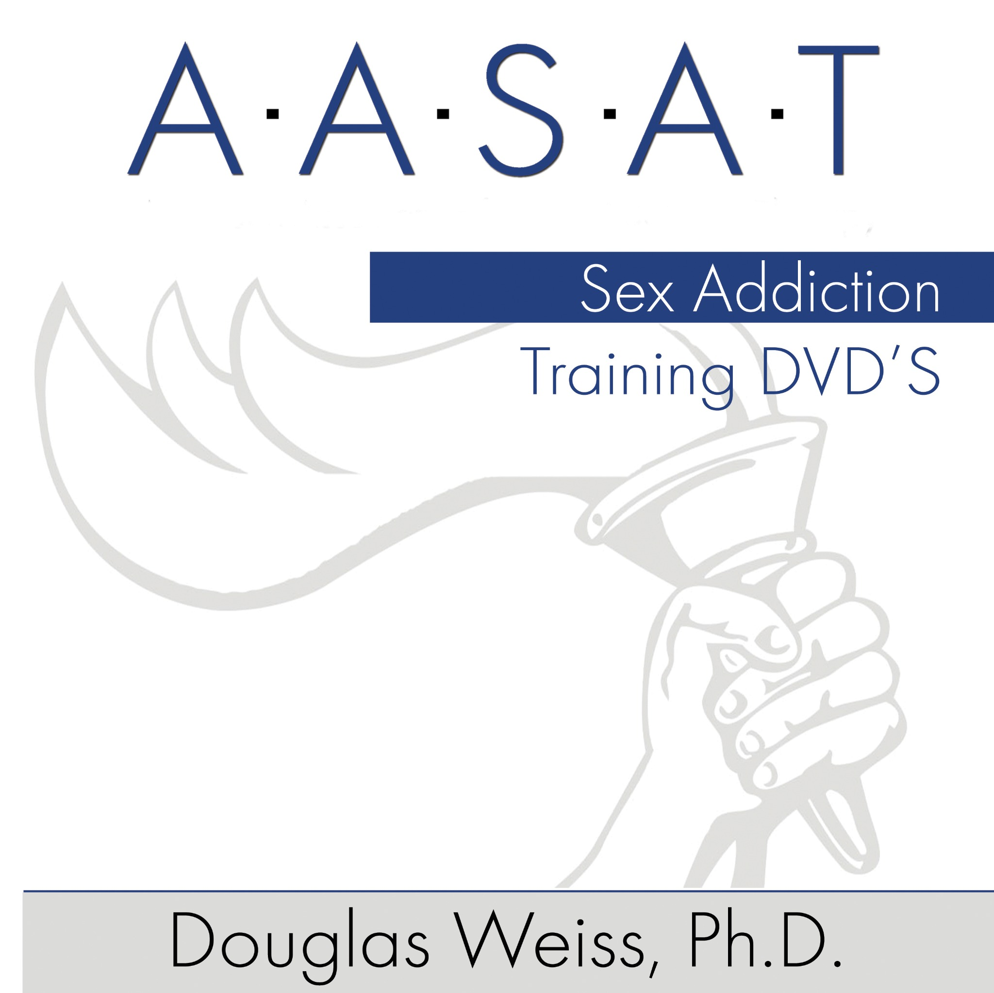 AASAT Sex Addiction Training - Part 3
