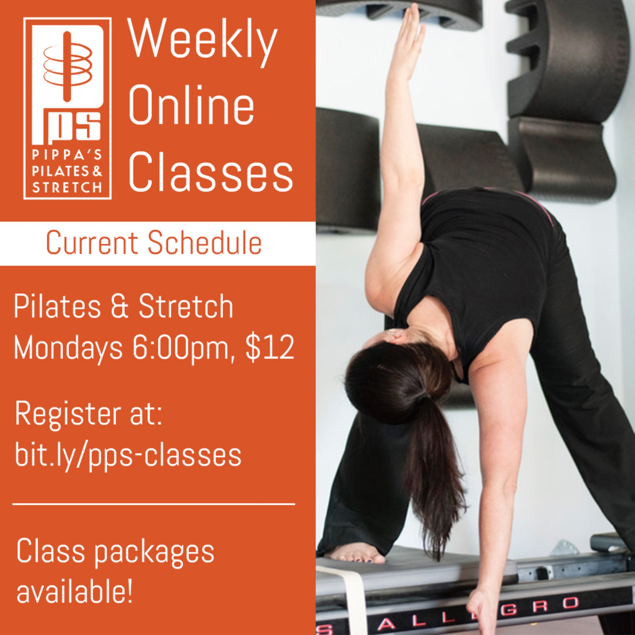 Zoom Class Package- 4 classes