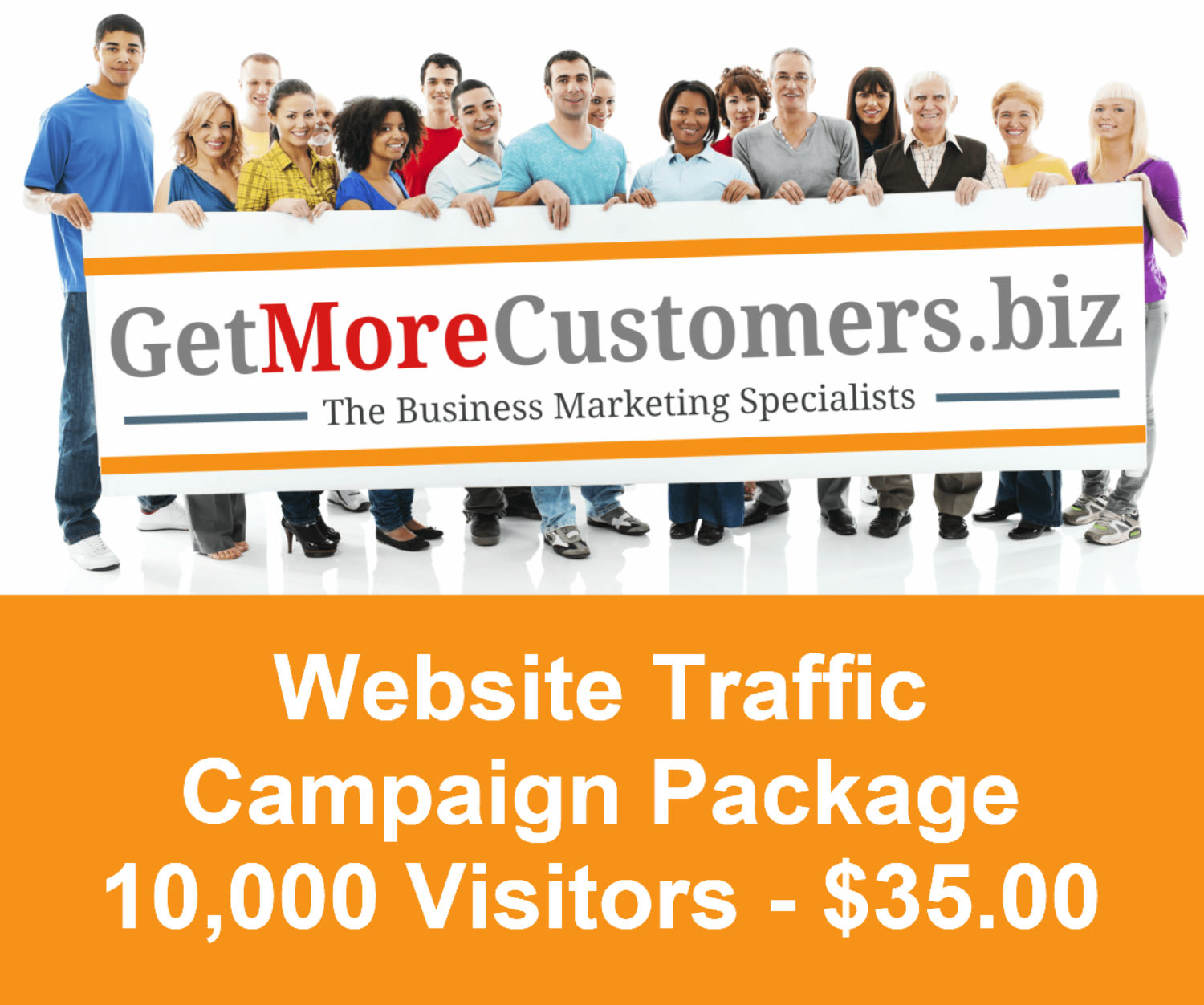 10,000 Website Visitors - $35.00 (30 Day Delivery)