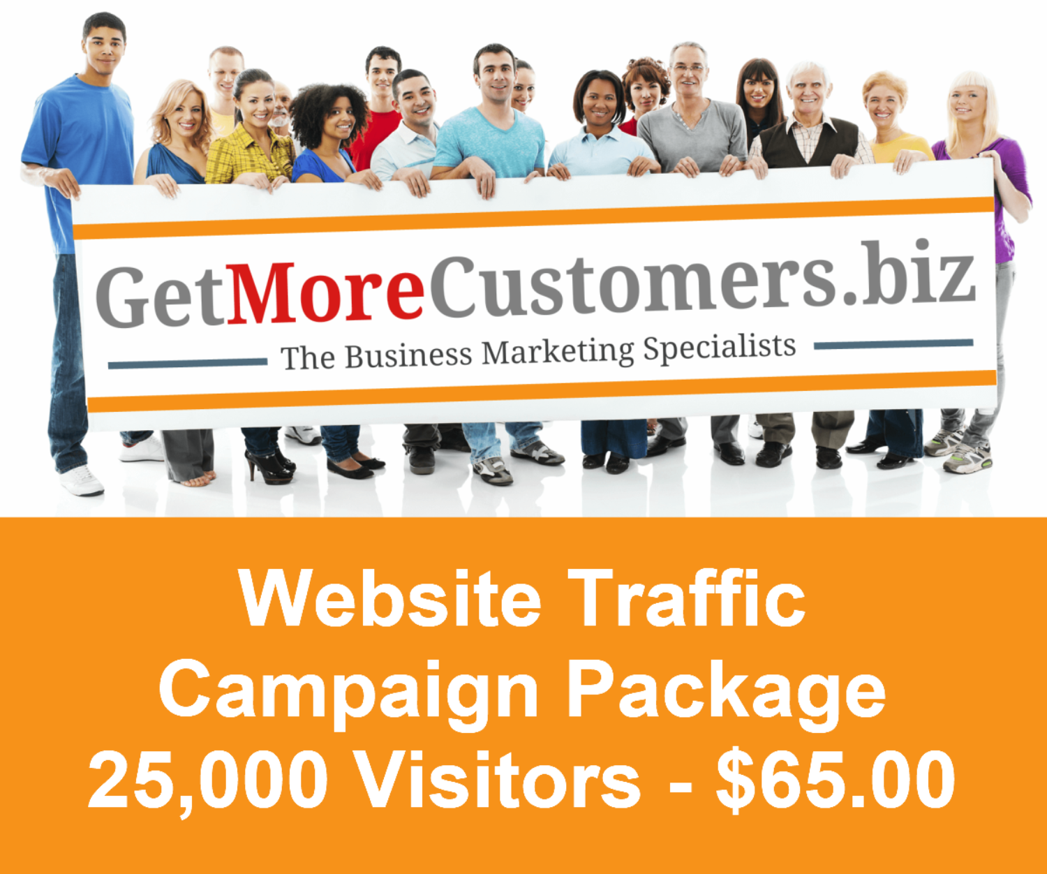25,000 Website Visitors - $65.00 (30 Day Delivery)