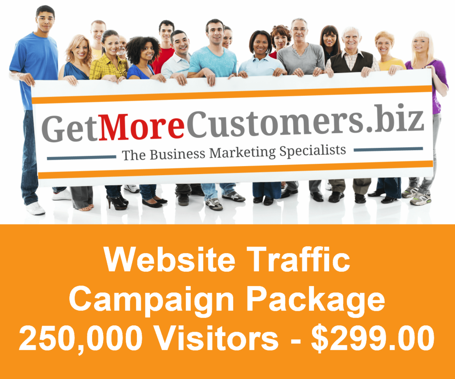 250,000 Website Visitors - $299.00 (30-90 Day Delivery)