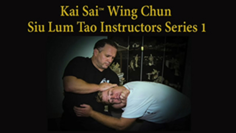 Wing Chun Siu Lum Tao Video Lessons
