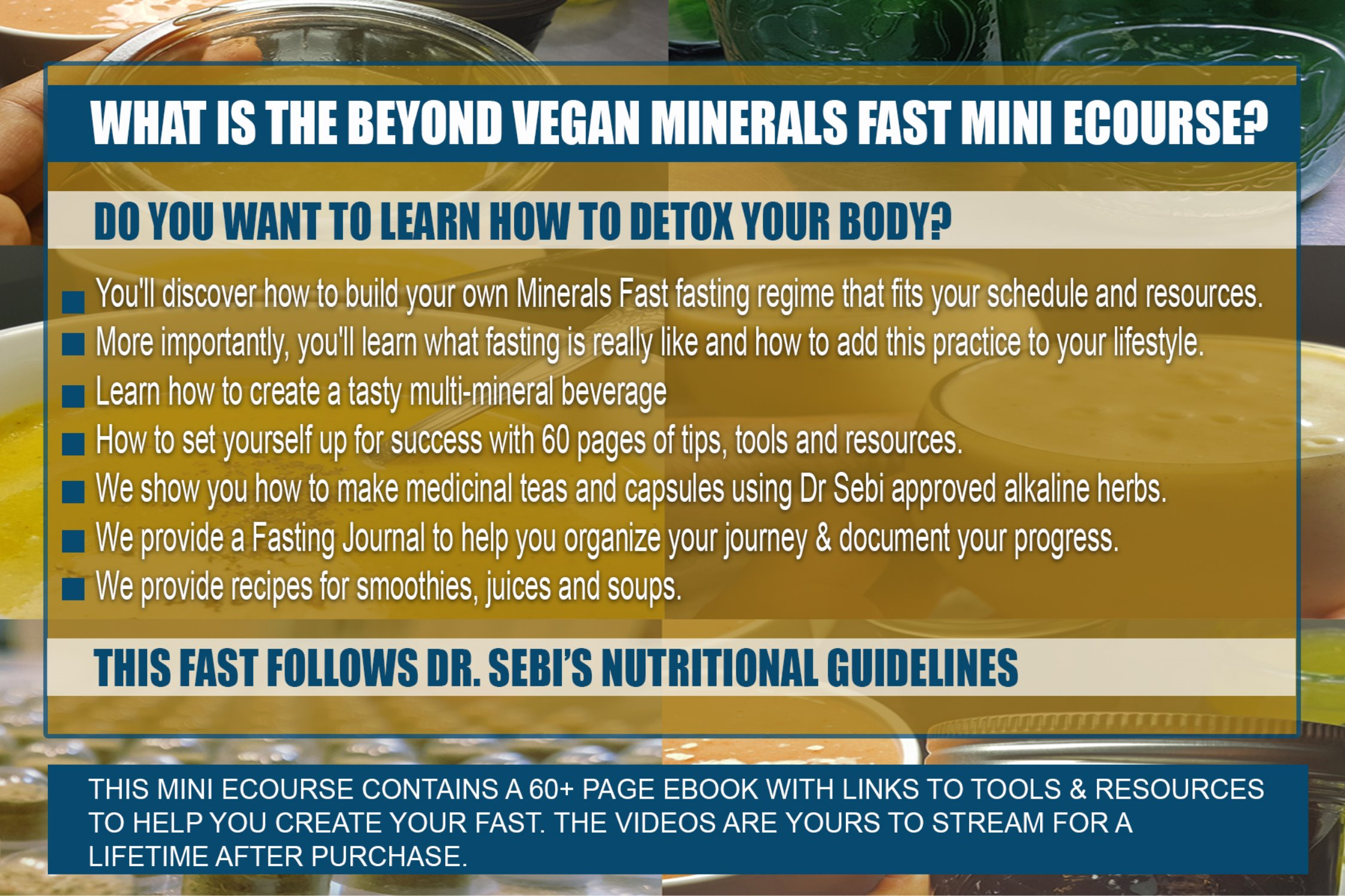 BEYOND VEGAN (TM) MINERALS FAST DIGITAL MINI ECOURSE