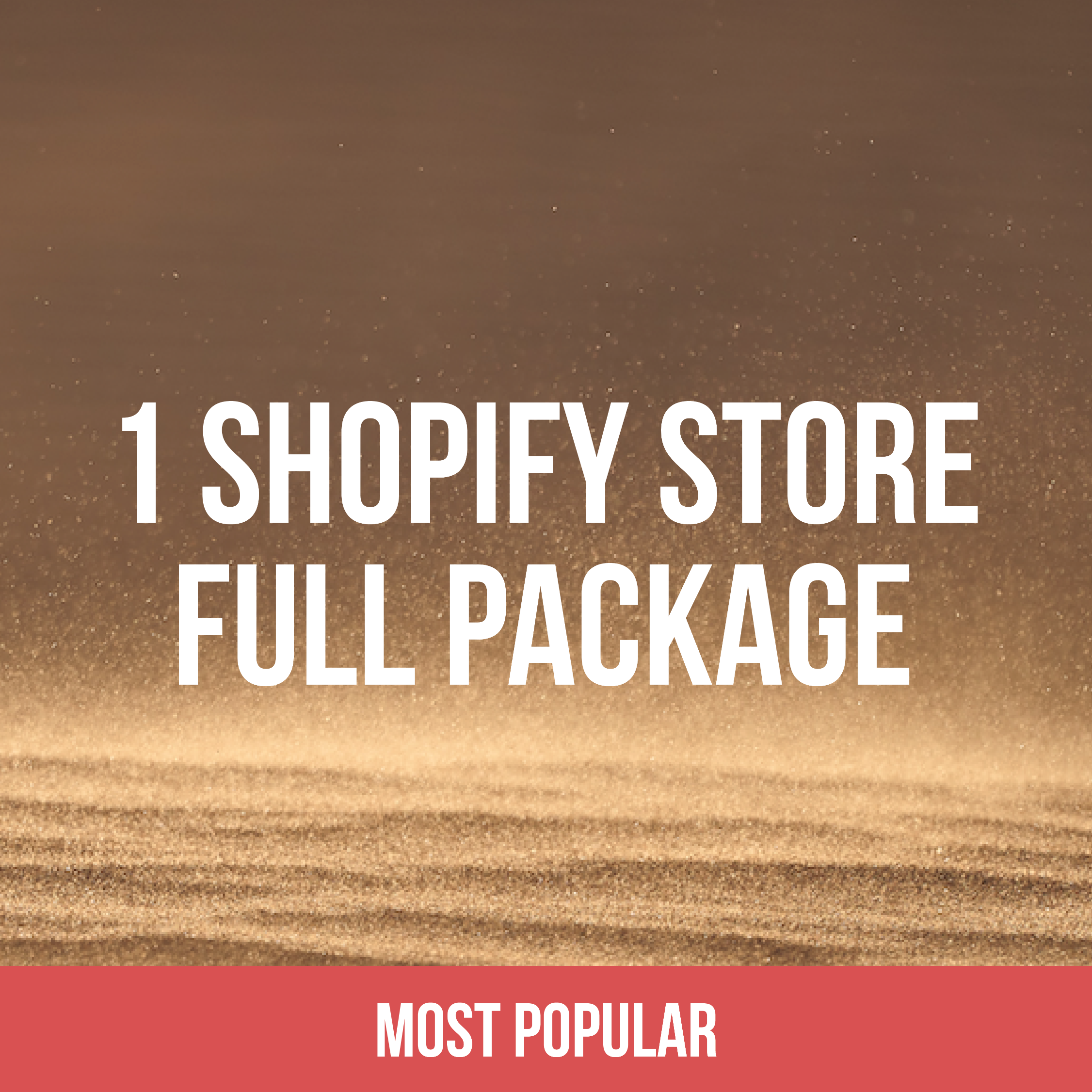 1 SHOPIFY STORE
