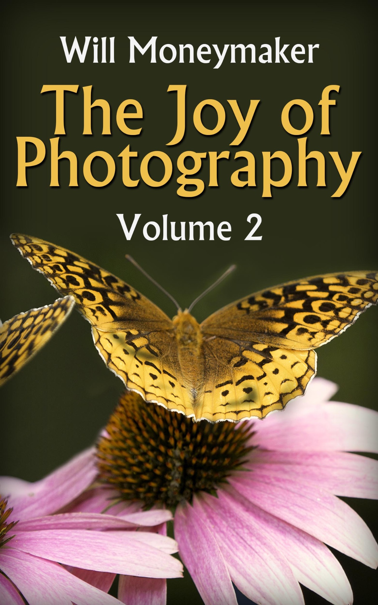 The Joy of Photography #02