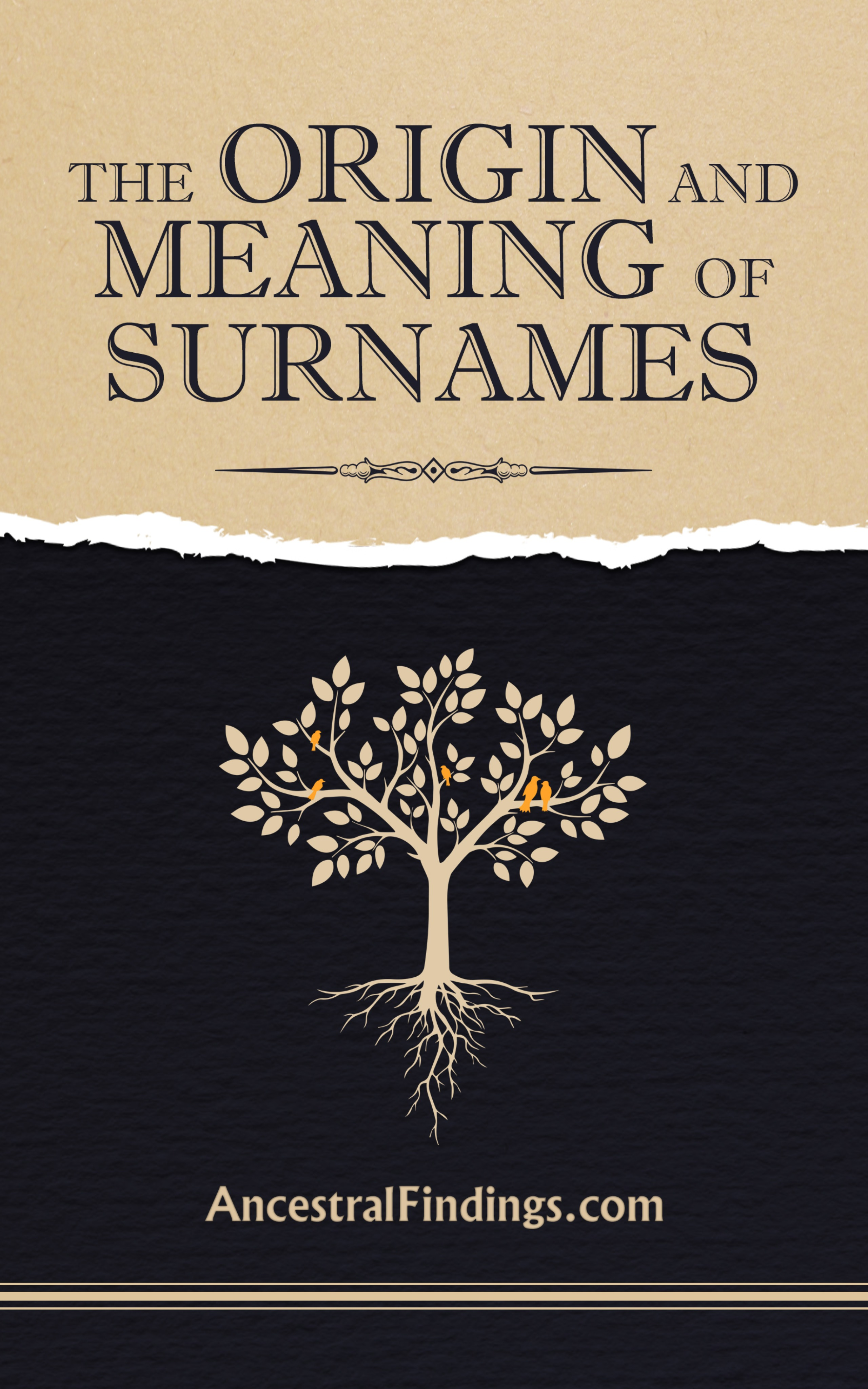 The Origin and Meaning of Surnames