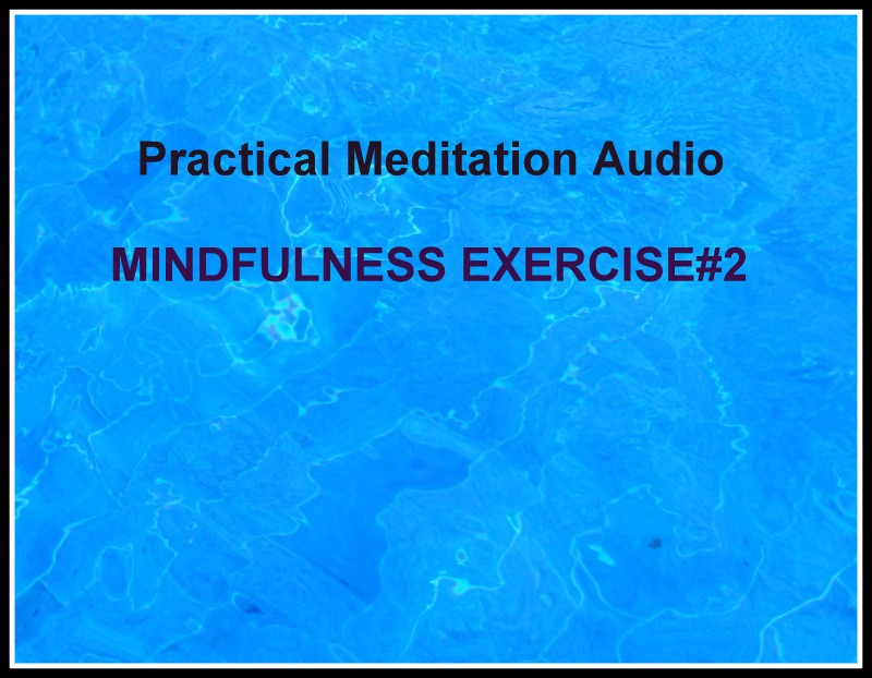 MINDFULNESS EXERCISE #2