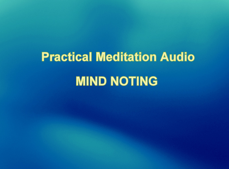 MIND NOTING AND MINDFULNESS