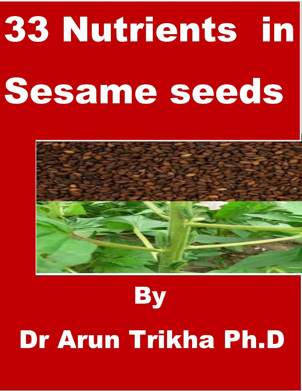 33 Nutrients in Sesame Seeds