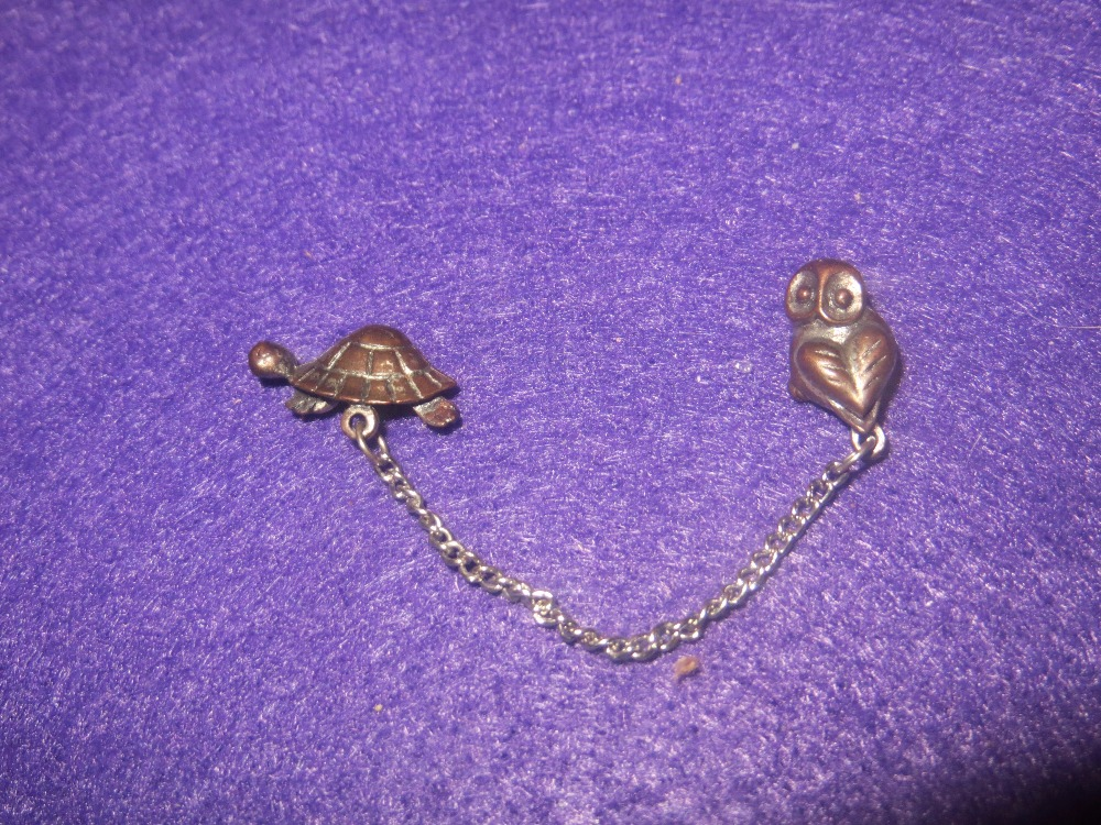 Turtle and Owl Eyeglass Pins