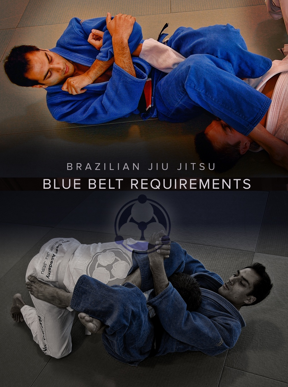 Brazilian Jiu Jitsu Blue Belt Requirements 1.0