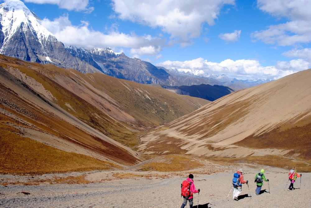 Your ultimate guide to Wild Adventures - Endurance