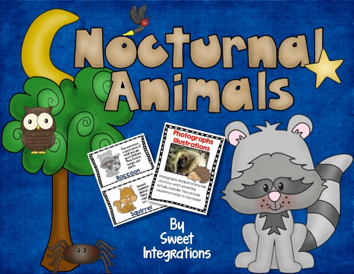 Nocturnal Animals: Reading Informational Text