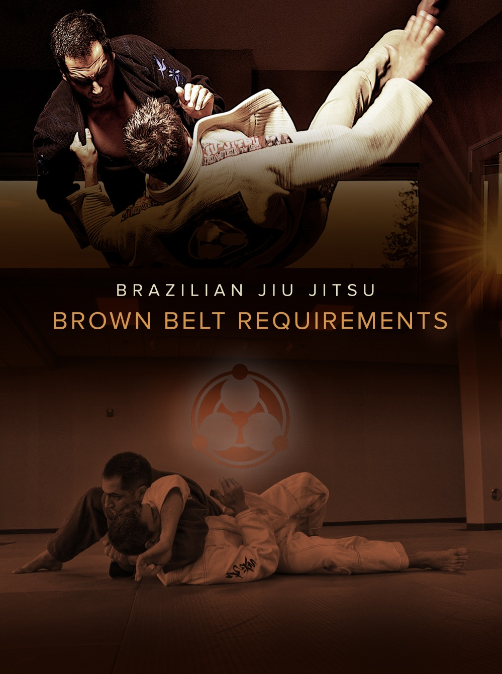 Brazilian Jiu Jitsu Brown Belt Requirements