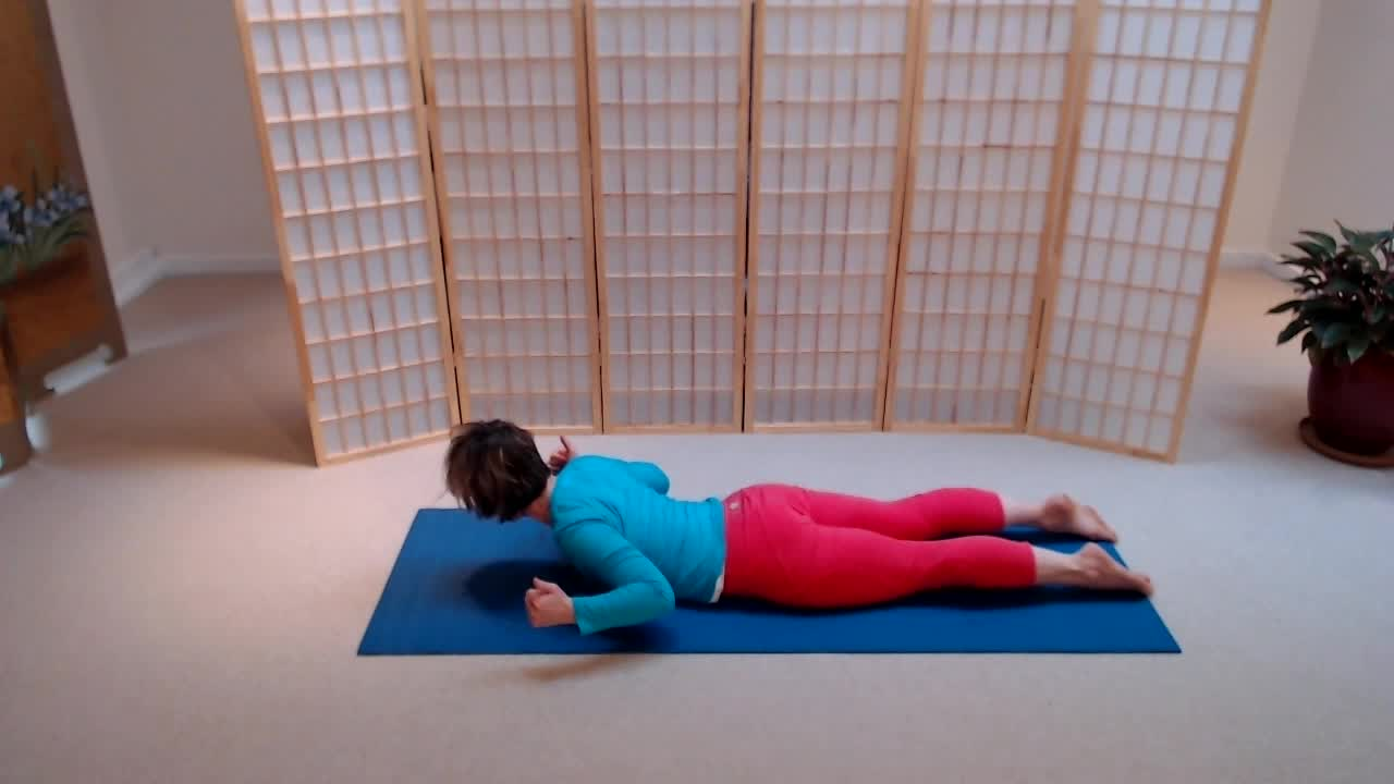 Yoga Therapy for Low Backs (30min)