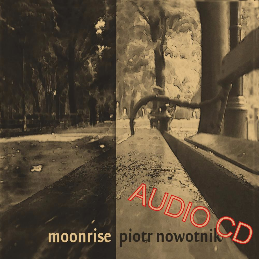 2011 - Moonrise (Audio CD)