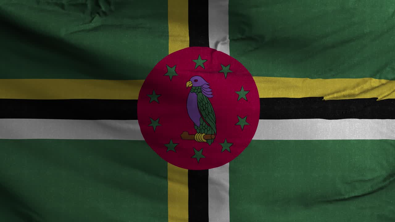 Dominica Flag Textured Waving Background 4K