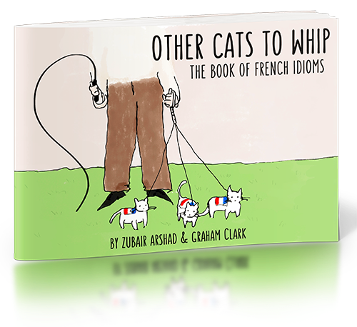 Other Cats to Whip - The Book of French Idioms